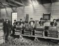 Women mixing dynamite at Nobel's Ardeer Factory, 1897