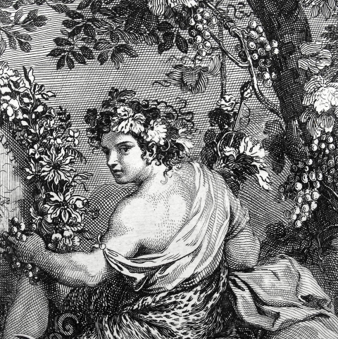 Deatil from a Sébastien Le Clerc engraving of a Charles Le Brun tapestry design from the 1679 'Tapisseries du Roy'. (Sp Coll S.M. 2042)