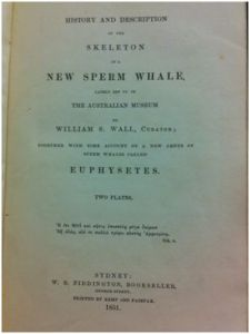 Title page of the sperm whale book