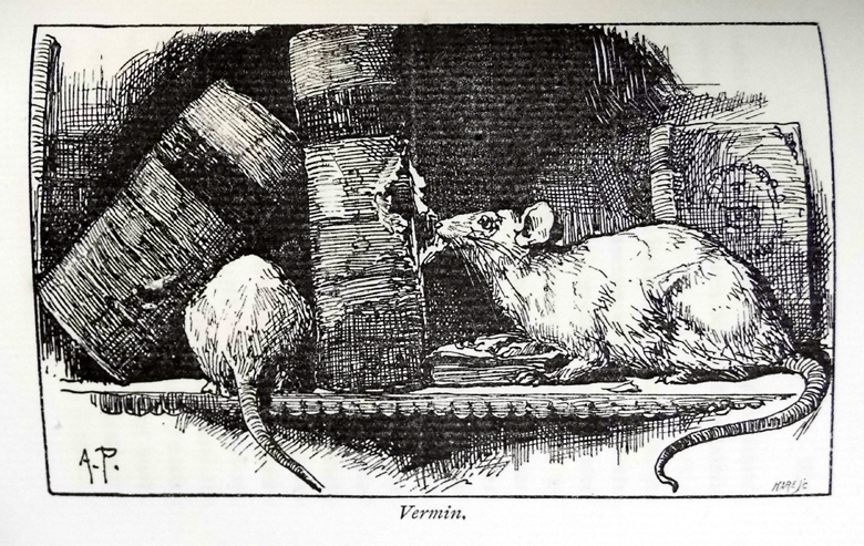 """Some unwelcome furry visitors from Blades's """"The enemies of books"""" (Sp Coll Mu30-f.25)"""