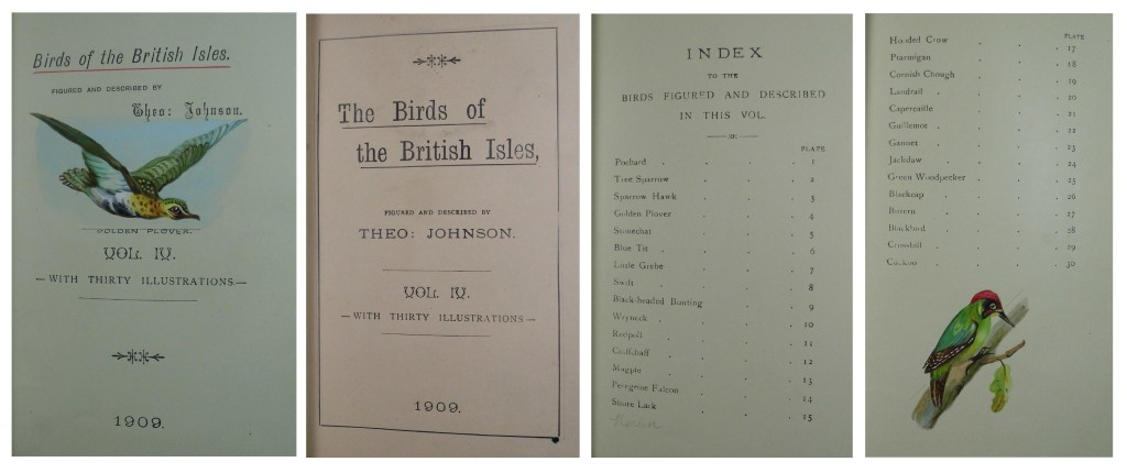 Example text pages from volumes of Johnson's Birds of the British Isles.