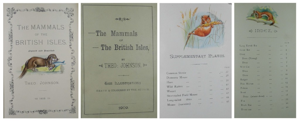 Examples of the letterpress and occasional hand done embellishments in Johnson's Mammals of the British Isles