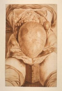 Az.1.4, Plate 26