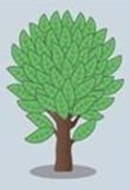 librarytree image