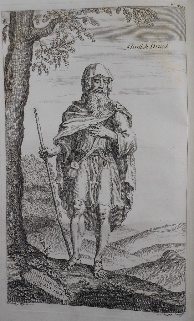 Illustration of a Druid in Sp Coll f450