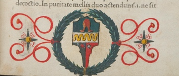 Unidentified coat of arms in Salernitanus: Antidotarium