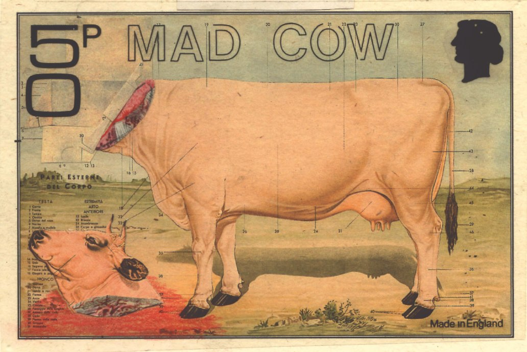 mad_cow