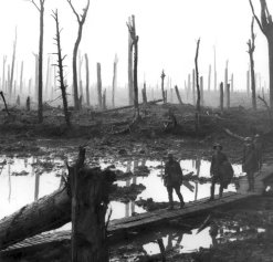 Chateau Wood Ypres 1917. From the Australian War Memorial Collections Database