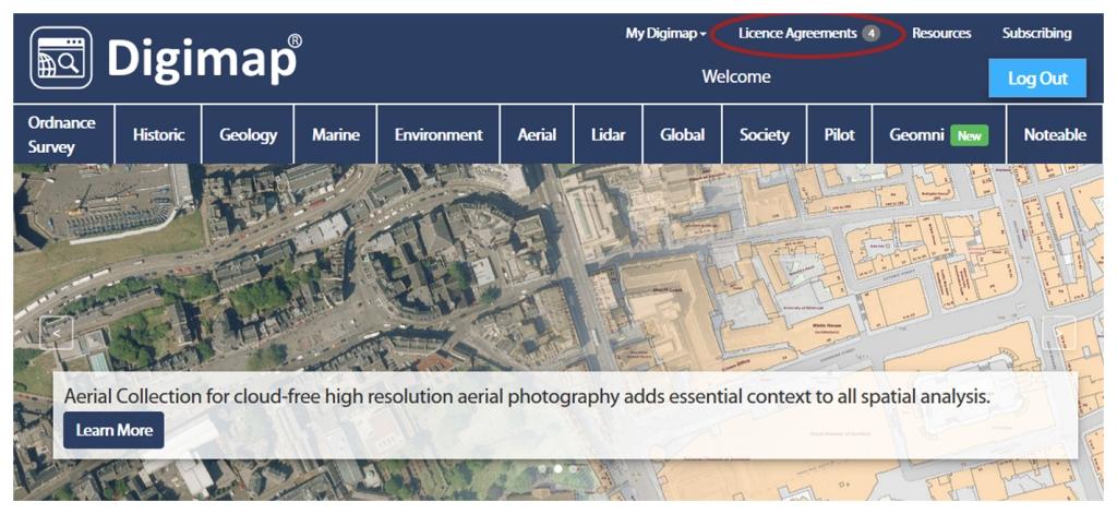 屏幕截图显示使用红色椭圆突出显示的许可协议链接。
